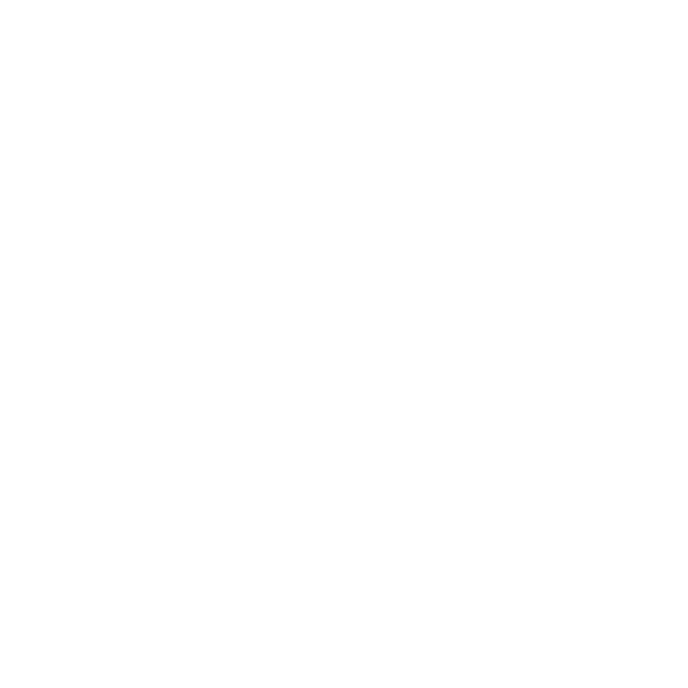 100 Spires City Tours - Logo